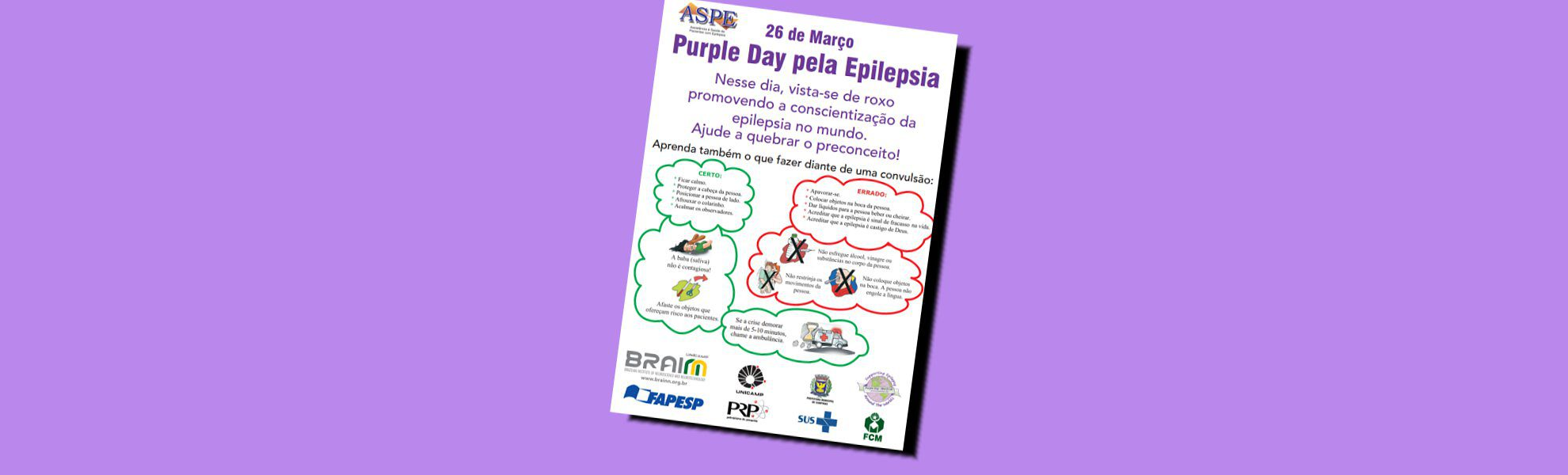 brainn-flyer purple day pela epilepsia